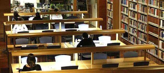 Biblioteca Palacio de Los Serrano. Foto: David Castro - Diario de Ávila